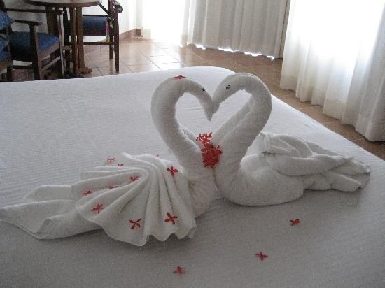 Image result for animal towels