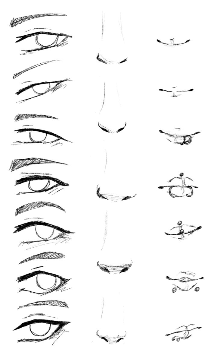 Facial Features Reference Drawing In 2020 Nose Drawing Anime Mouth Drawing How To Draw Anime Eyes