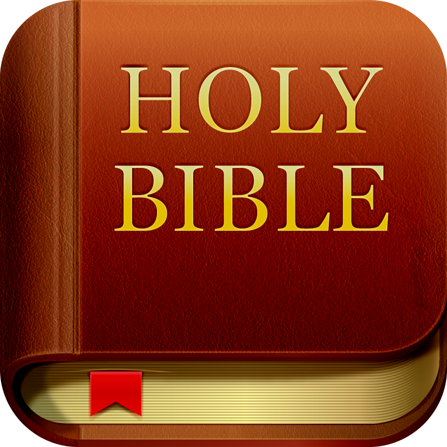 Bible App Community Shatters Records During 2012 Bible