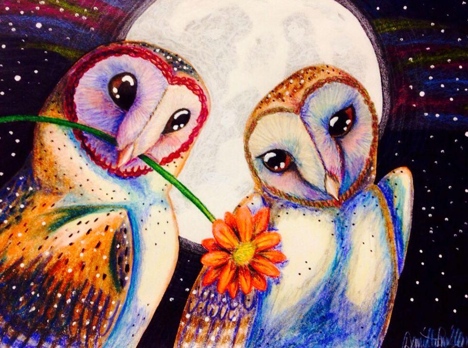 Beautiful owl love.