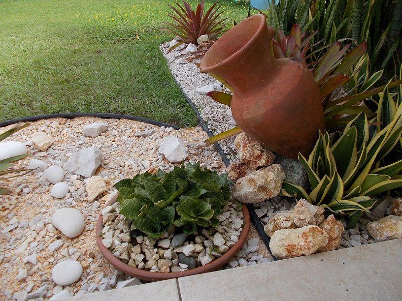 Arreglito que hice en una esquina del jardin jardin for Arreglo de jardines pequenos