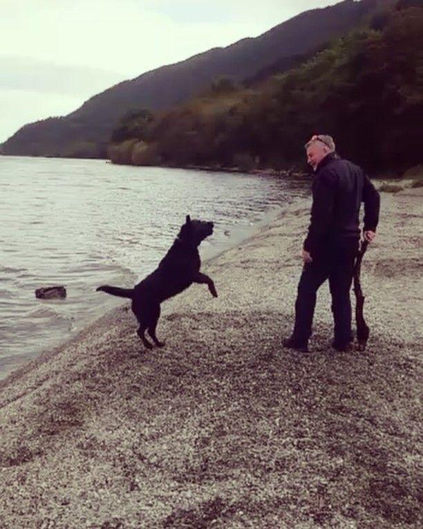 Mac taking a dip in Loch Lomond on a recent trip. #dogsofinstagram #happy #dog #lochlomond #coldwater #naturephotography #happydog #wetdog #scotland #lochlomond