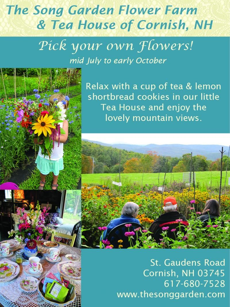 The Song Garden Cut Your Own Flowers By Donation Day Time