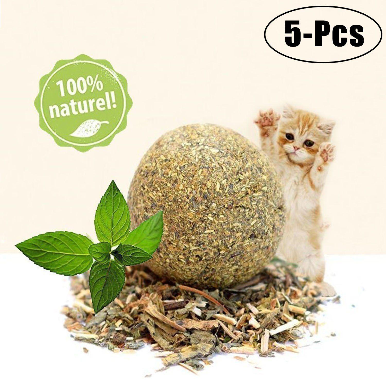 Legendog Catnip Ball 5pcs Cat Catnip Natural Compressed Cat Ball Pet Treats Toy For Kitten Puppy You Can Get More Details By Cat Ball Catnip Toys Pet Treats