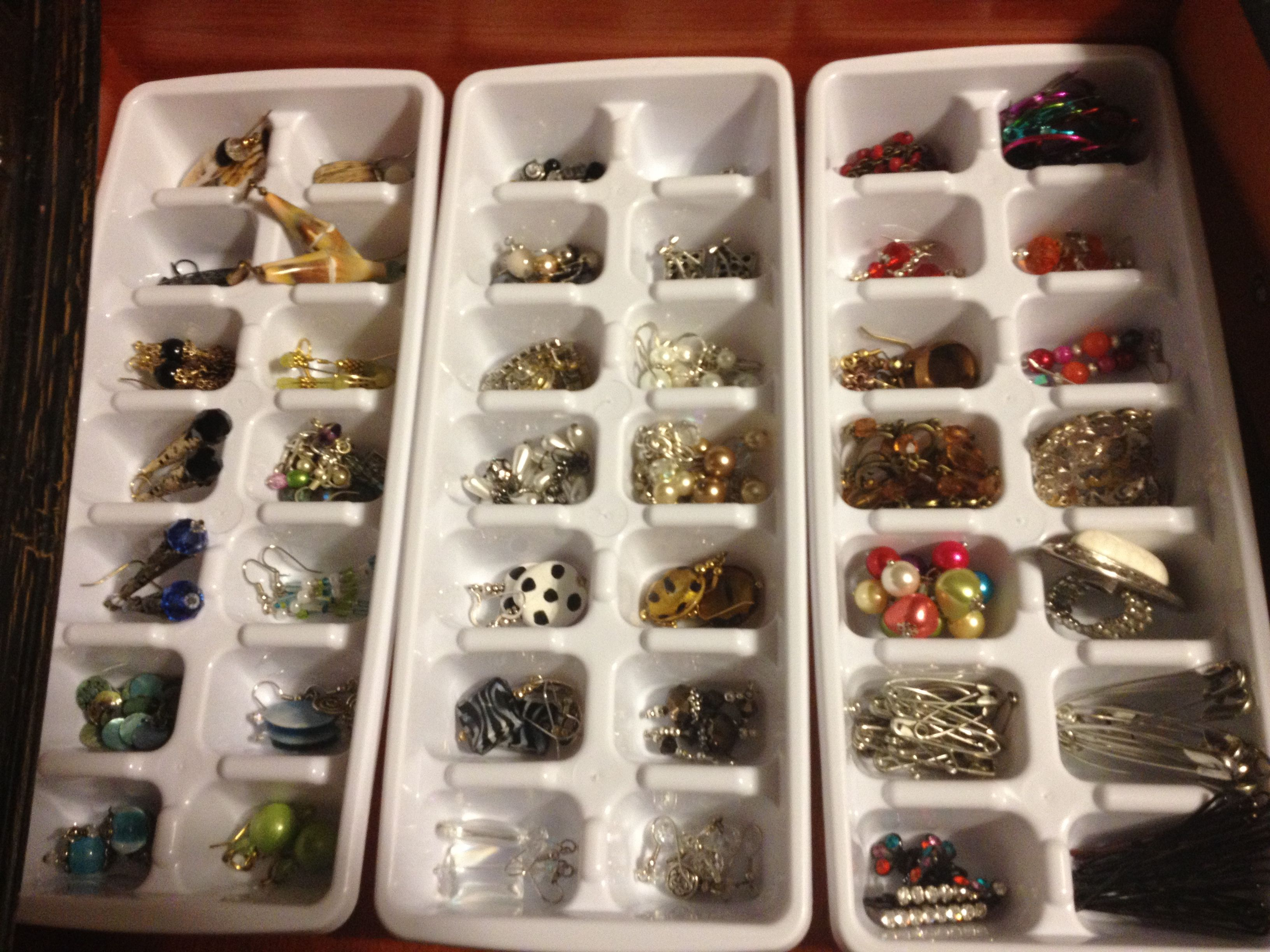 Ice Trays Jewelry Organizers 3 for 1 at Dollar Tree