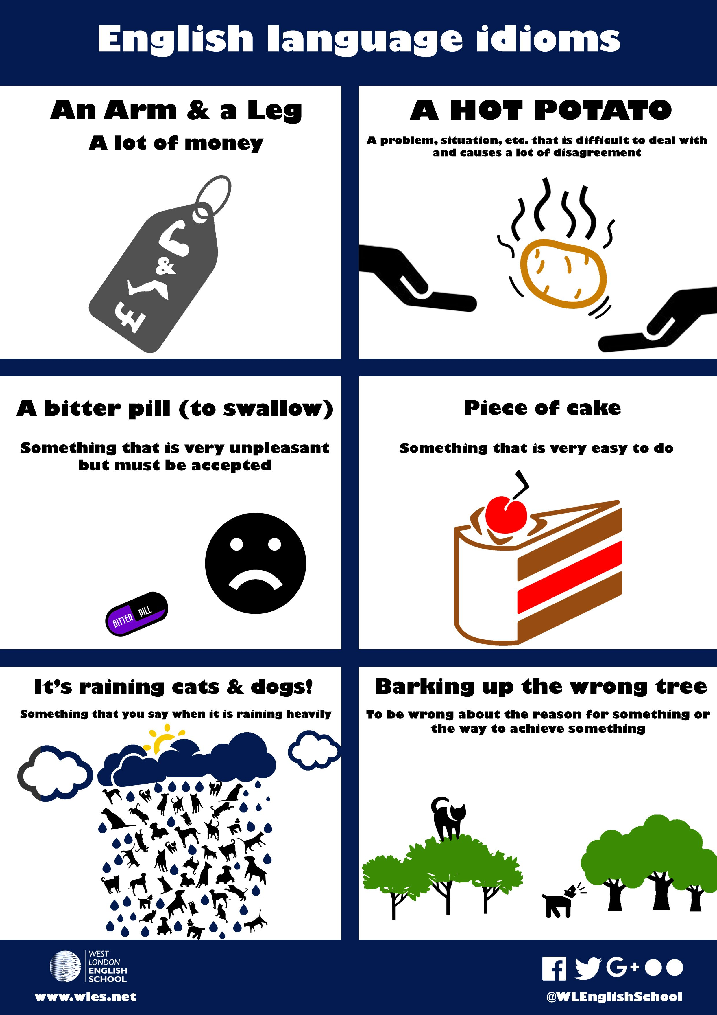 English language idioms | ingl...