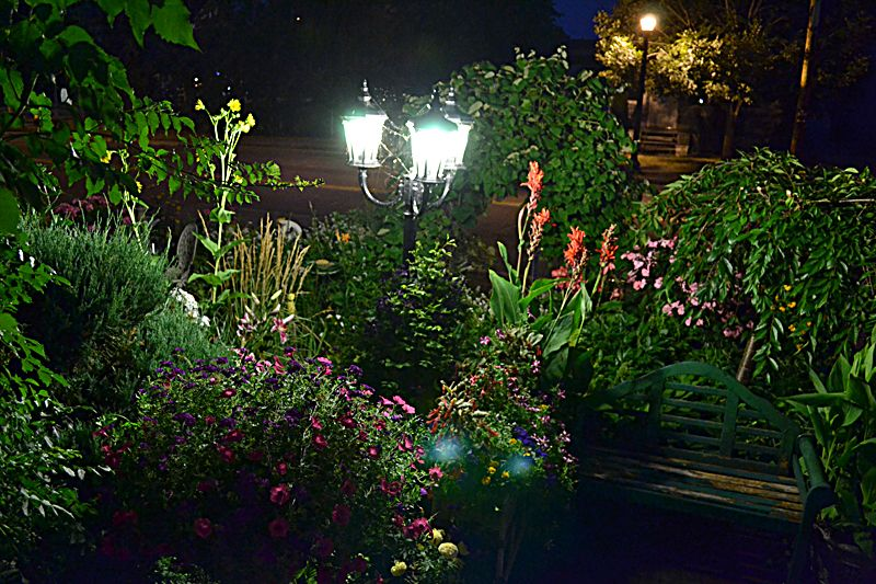 Linda rutenberg garden night