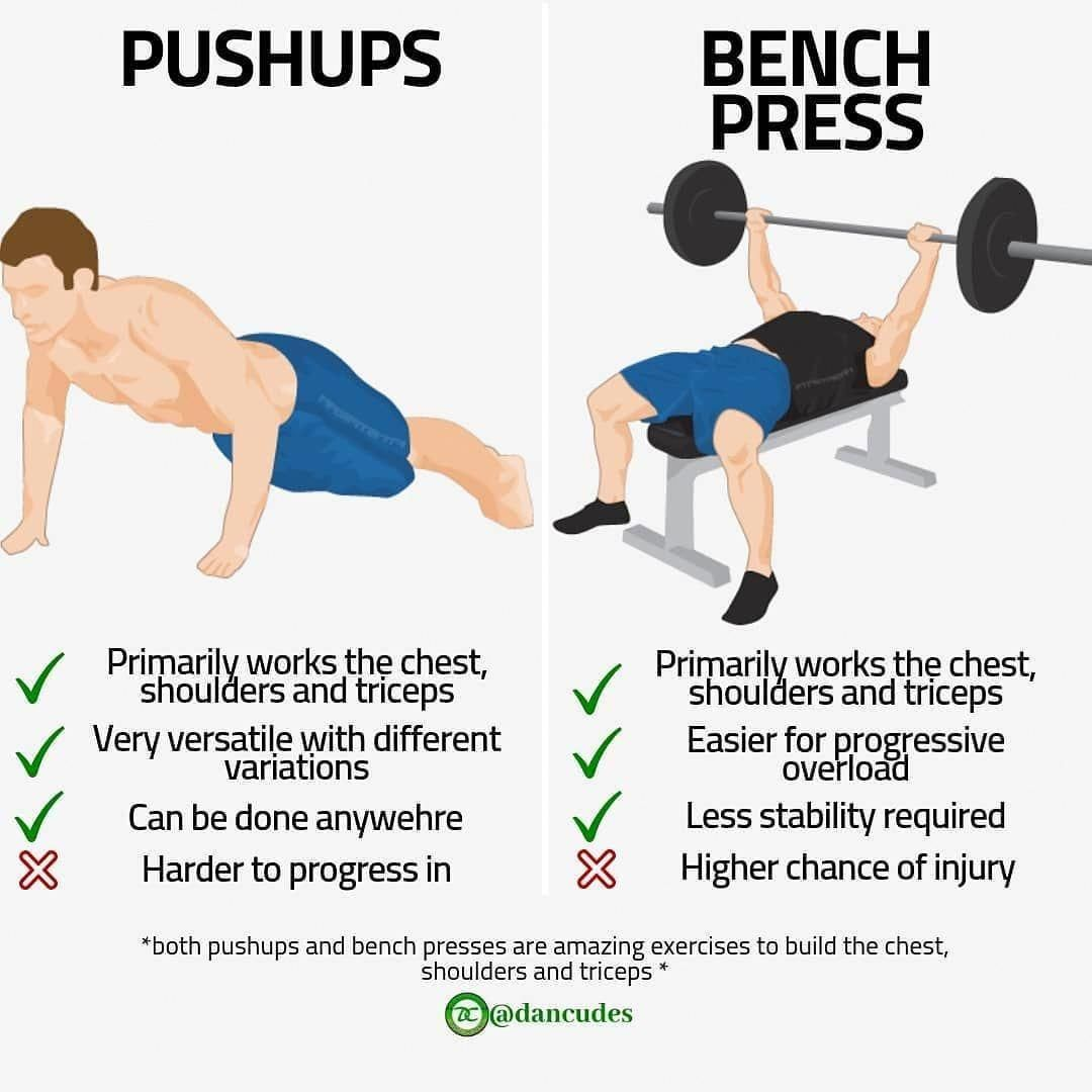 Seeking Out More About Wooden Bench Press Then Read On Declinebenchpress Bench Press Push Up Workout Chart