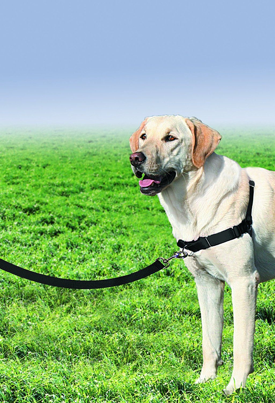 PetSafe Easy Walk Harness, Large, BLACK