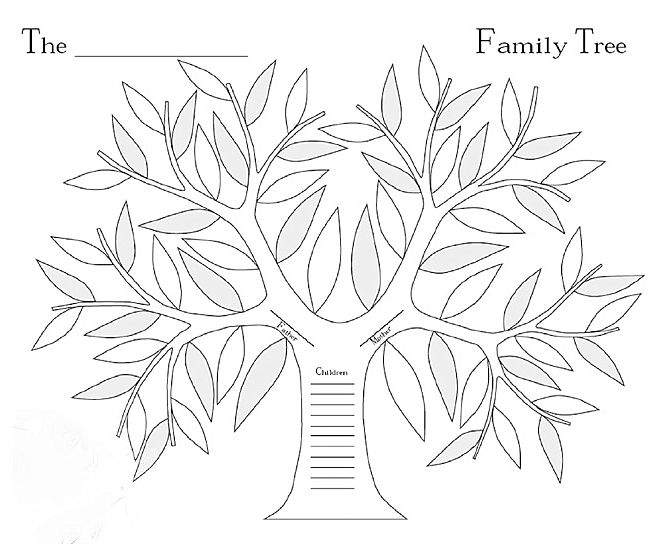 Family Tree Coloring Page Primary Blank Family Tree