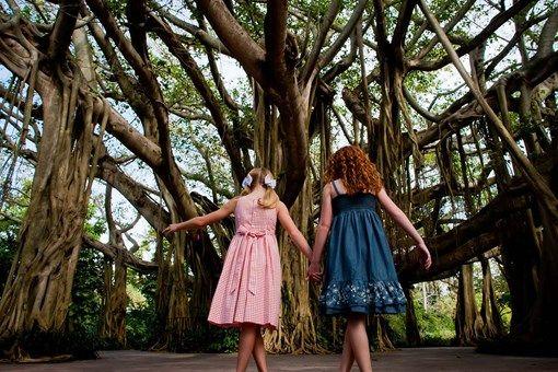 Cypress Gardens_1800x900.jpg