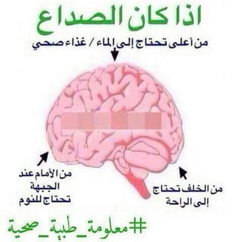 Pin By Fawaz Al Dhari On صحة Health Fitness Nutrition Health Facts Health