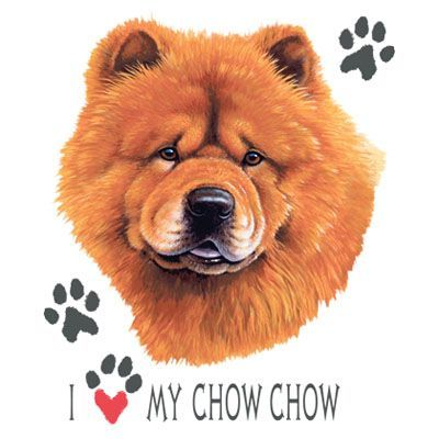 Chow Chow Dog Image T Shirt 100 Cotton Woman S Cut And Style T