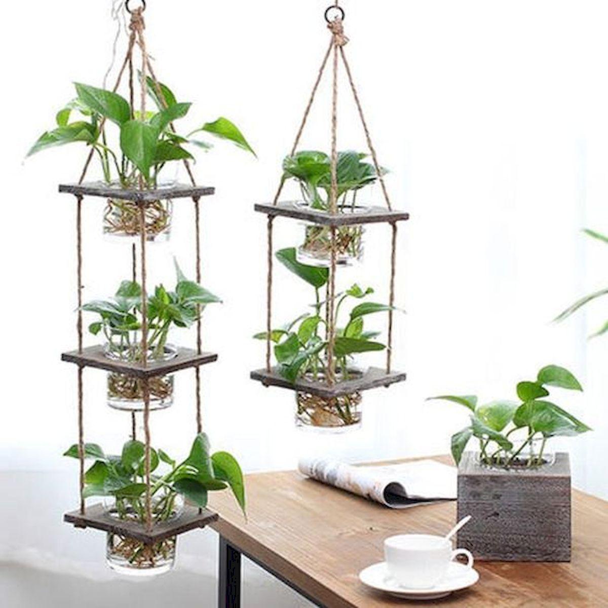 The Recent Trend Of Vertical Gardening Is Becoming