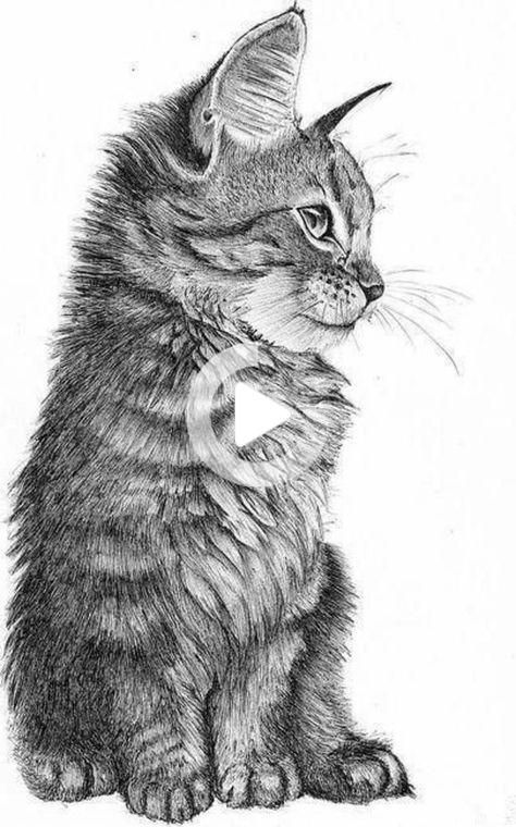 Learn how to draw with pencil – to create art itself