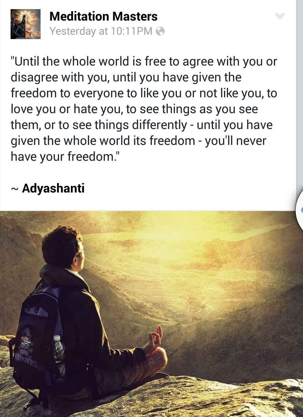 Adyashanti Quotes Until You Have Give The Whole World Its Freedom You'll Never Have