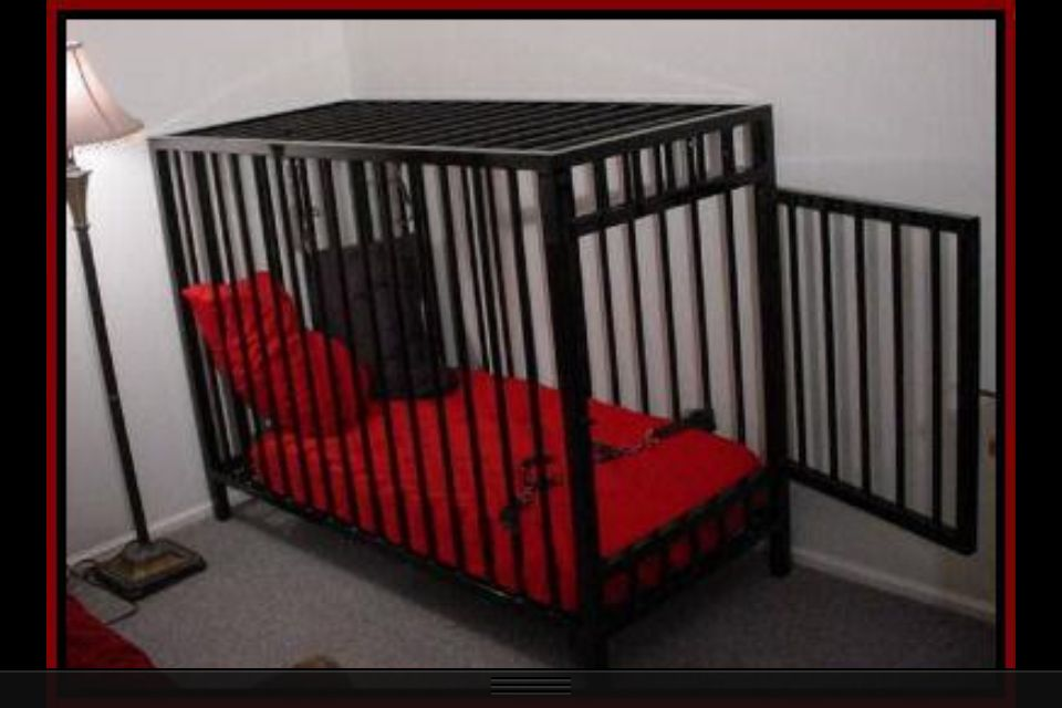 Thought lifestyle bdsm cage training really. Charming