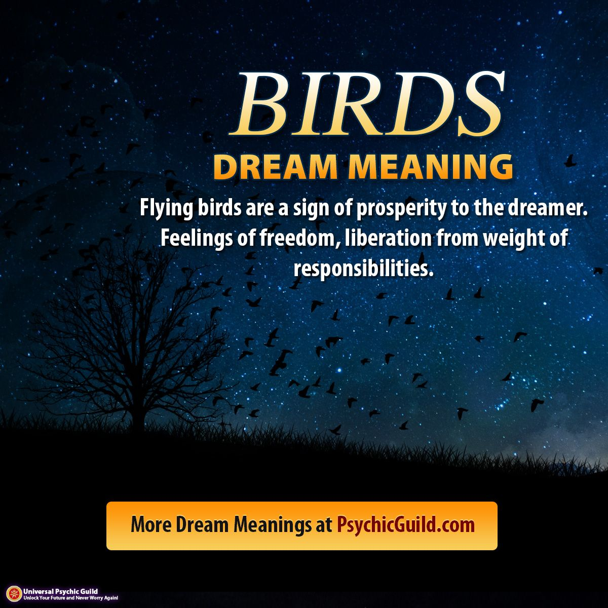 Dreammeaning Flying Birds Are A Sign Of Prosperity To The Dreamer