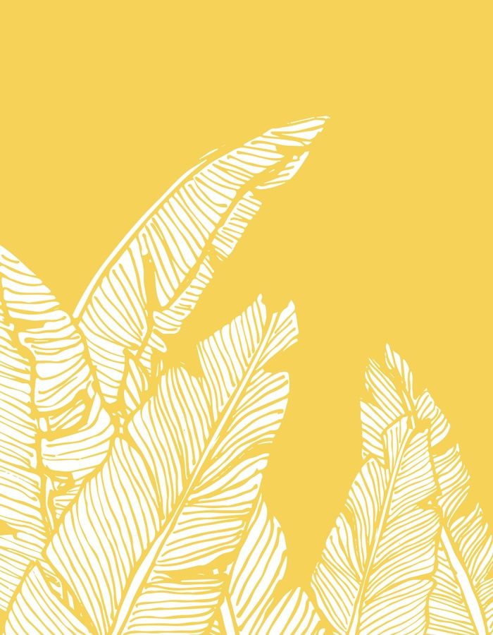 Handdrawn banana leaves, turn into a vector illustration