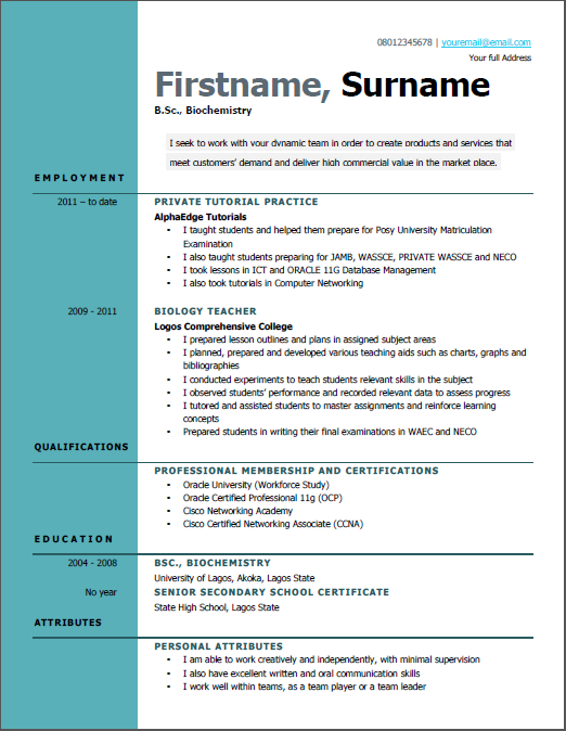 curriculum vitae example for job in nigeria