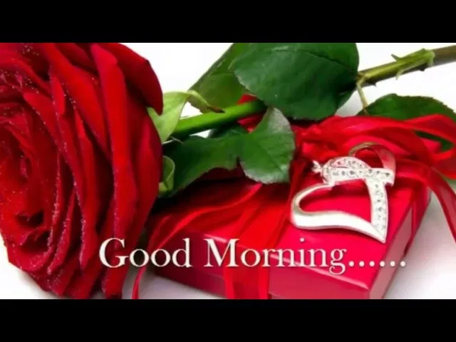 Top Good Morning Whatsapp Status Video Download In 2020 Good Morning Roses Good Morning Gif Good Morning