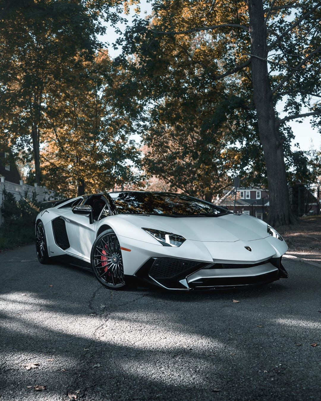 Spotted A Wild Creature In 2020 Sports Car Wallpaper White Lamborghini Lamborghini Aventador Roadster