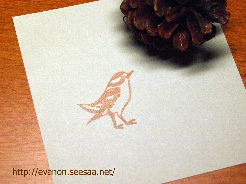 Tiny sweet bird