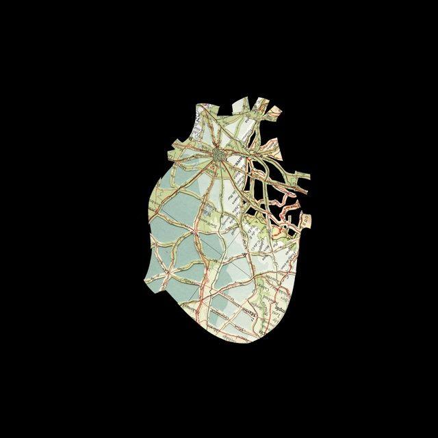 Shannon Rankin | Med in ArtMed in Art