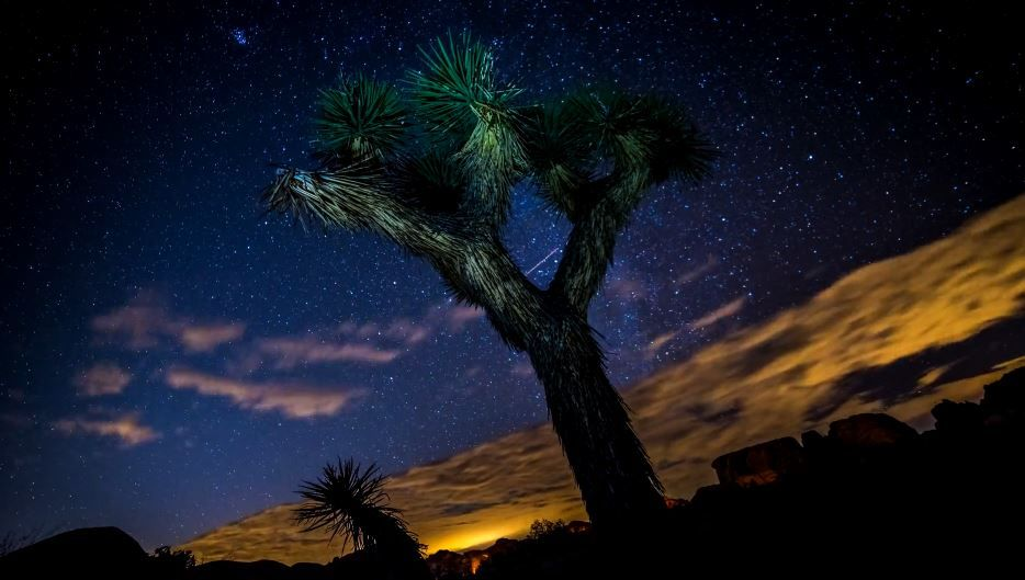 Un petit voyage en Californie et en time lapse par Michael Bloom | Video here : http://alexblog.fr/voyage-californie-time-lapse-michael-bloom-50007/