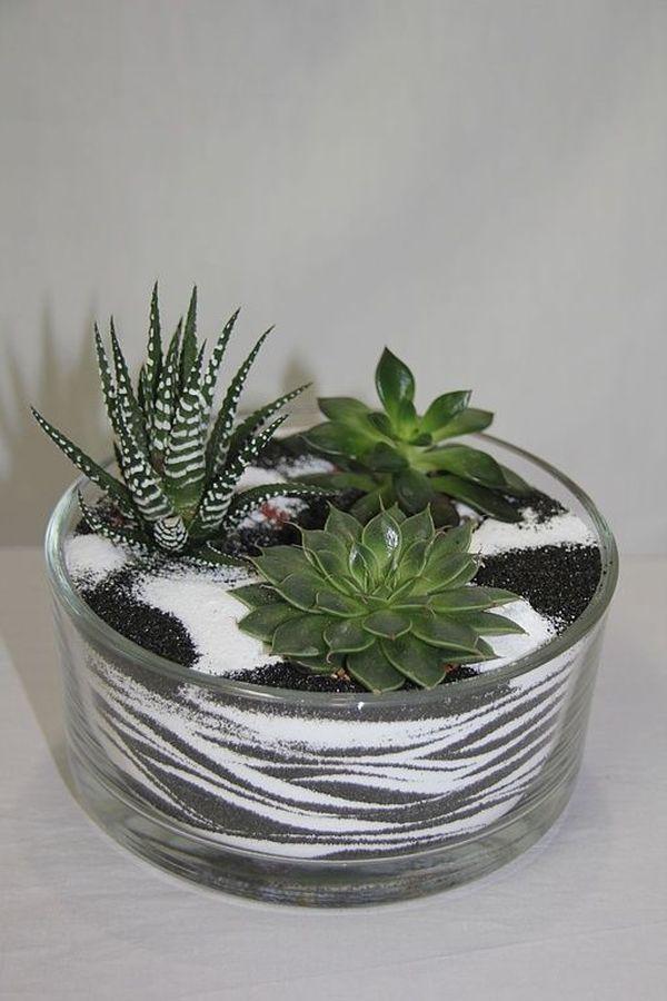Photo of Kleiner Garten in einer Glasschüssel – Arrangementideen mit Sukkulenten – Beste Dekoideen
