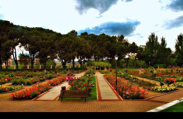 Madrid la rosaleda del parque del oeste 010