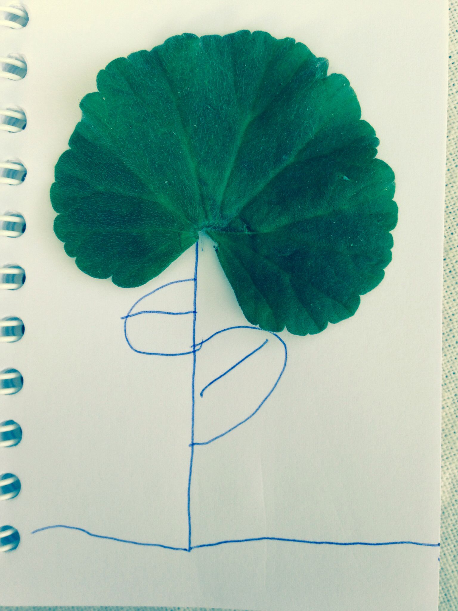 Leaf art geranium flower by Grace x