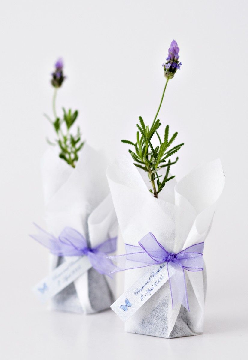 For your purple themed wedding, what better gift than lavender ...