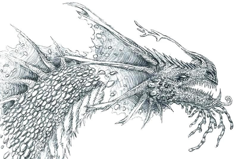 Image result for coloring pages, dragons Dragon coloring