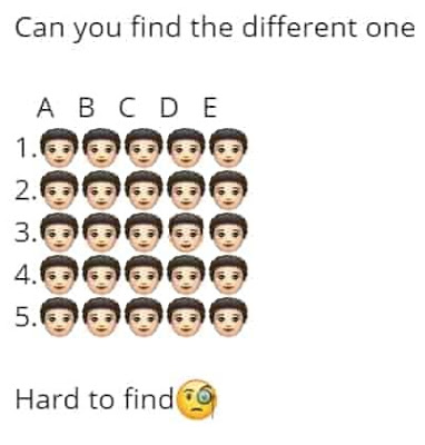 Can You Find The Different One puzzle puzzles