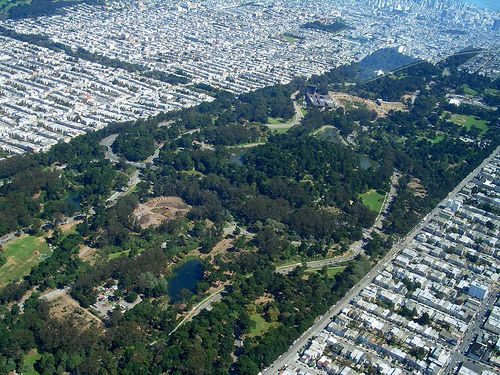 """Golden Gate Park and Panhandle, looking northeast.  An artificial paradise built on the sand dunes of the San Francisco peninsula.  """"In drag  so long, she thinks she's a girl."""" From Telestar Logistic's photostream"""