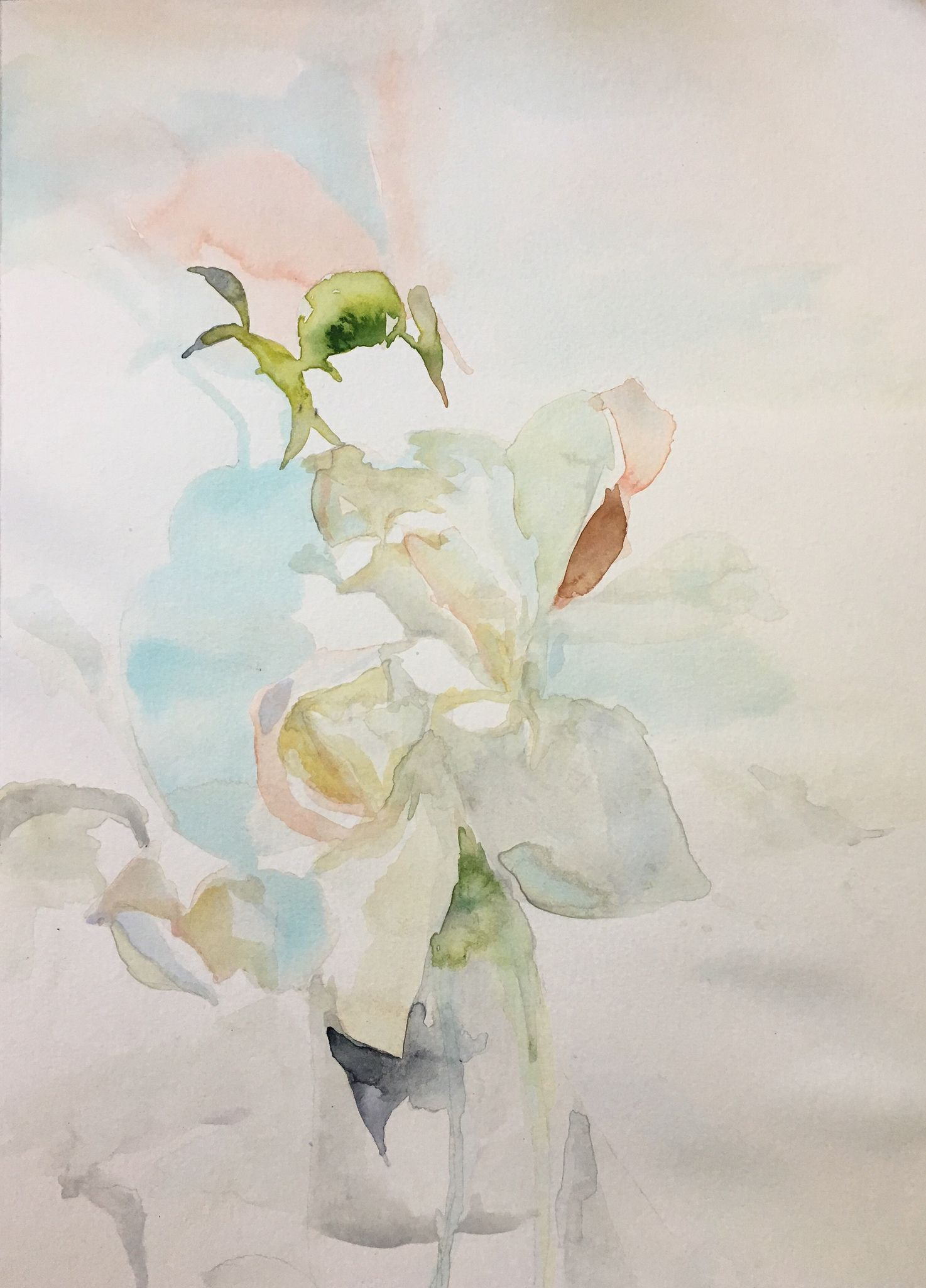 Faint 2019 Watercolor Painting On Paper 12 X 16 Aquarelle