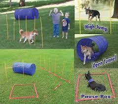 Afbeeldingsresultaat voor honden trainen   Dog agility ...