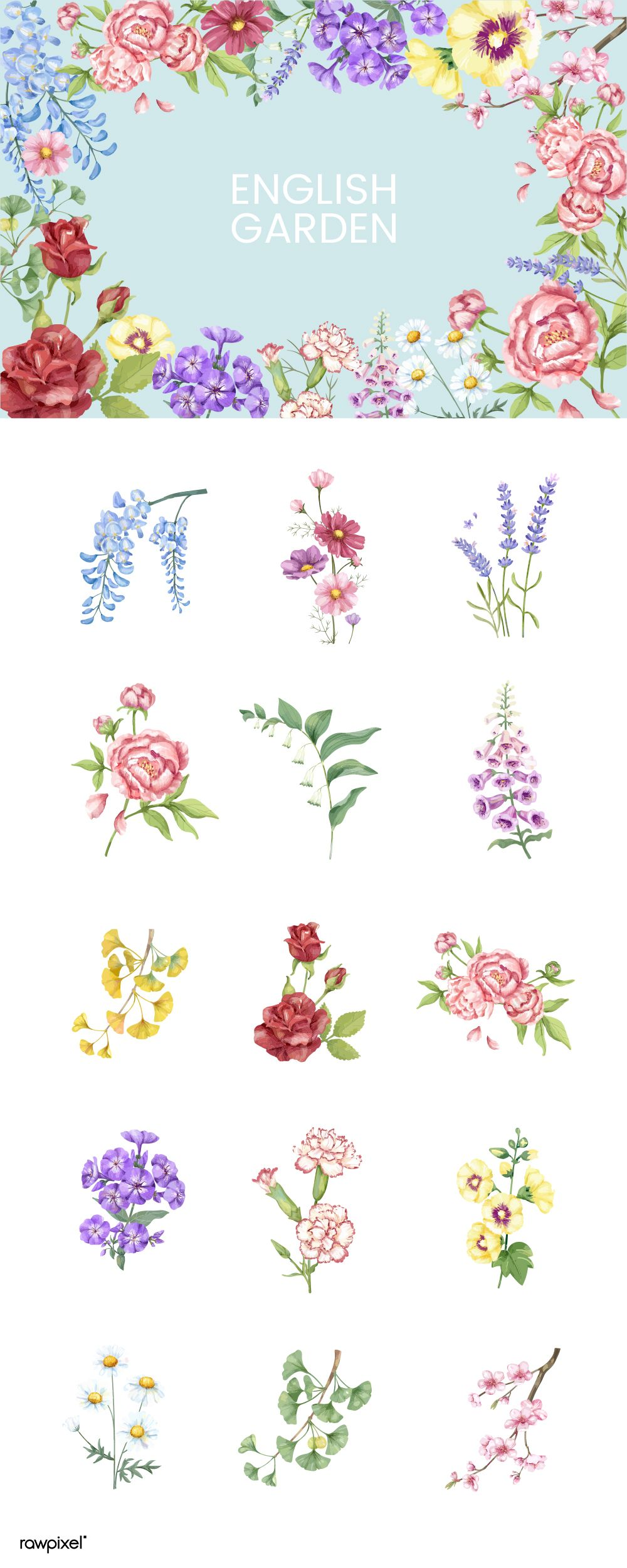 Download Free Royalty Free Vectors Of Beautiful Watercolor Spring And Summer Flower Vectors At Rawp Watercolor Flower Vector Flower Illustration Flower Doodles