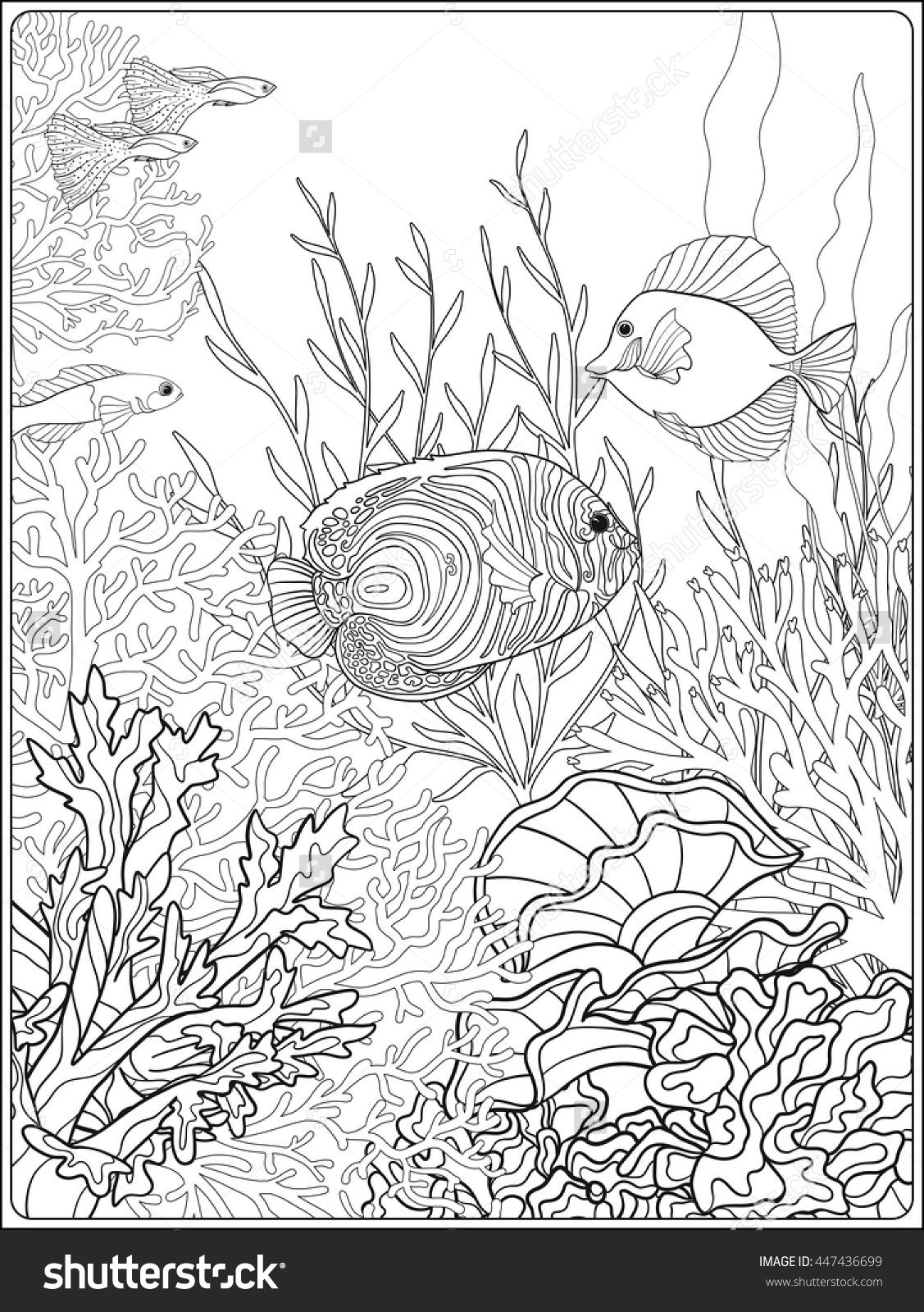 Adult coloring book Coloring page