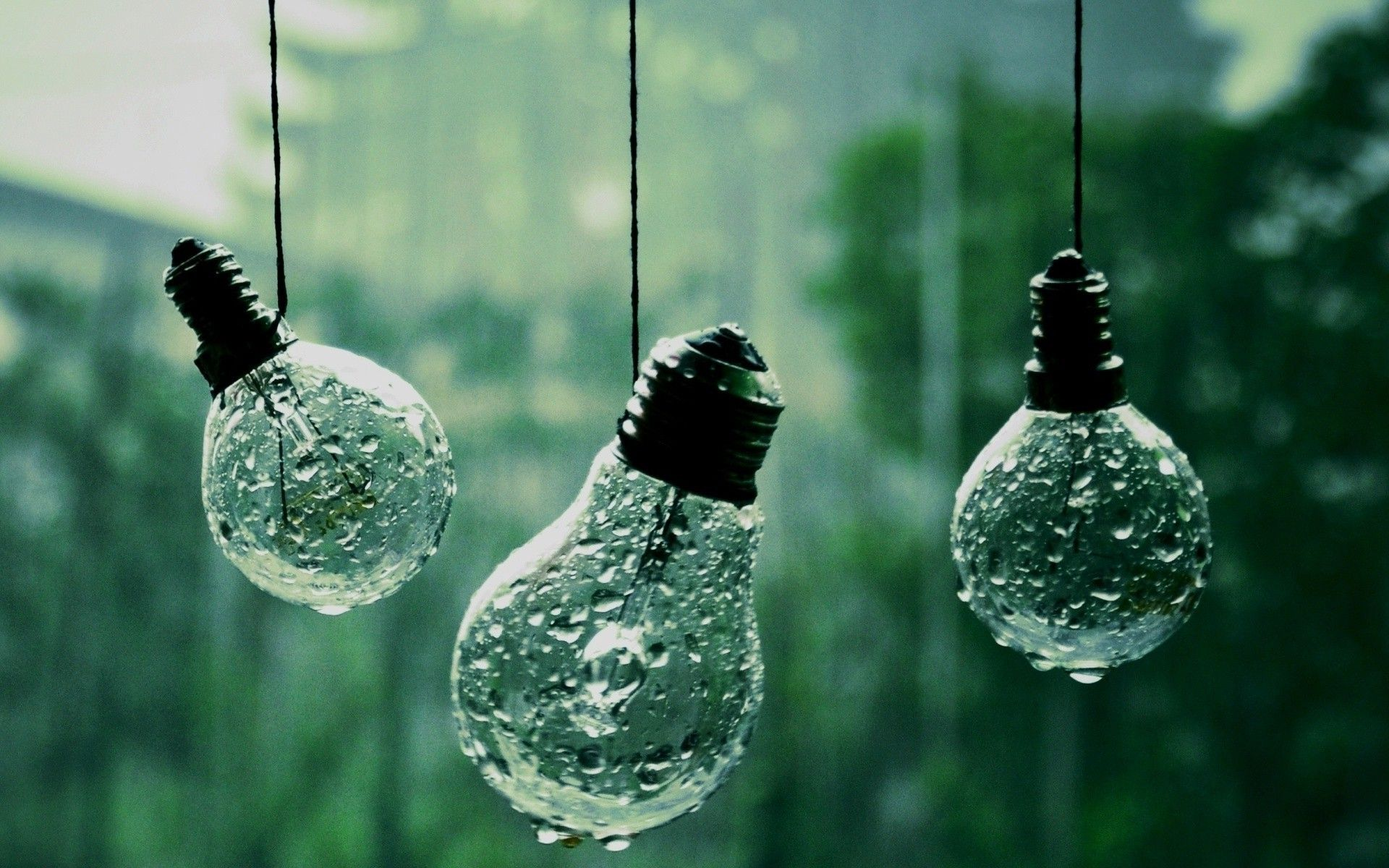 Light Bulb Photography  Wallpapers Full Hd Wallpaper