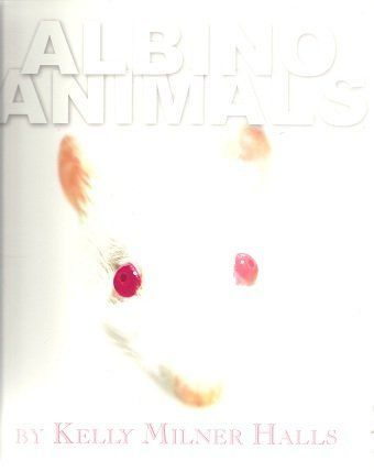 Albino Animals #albinoanimals Albino Animals #albinoanimals