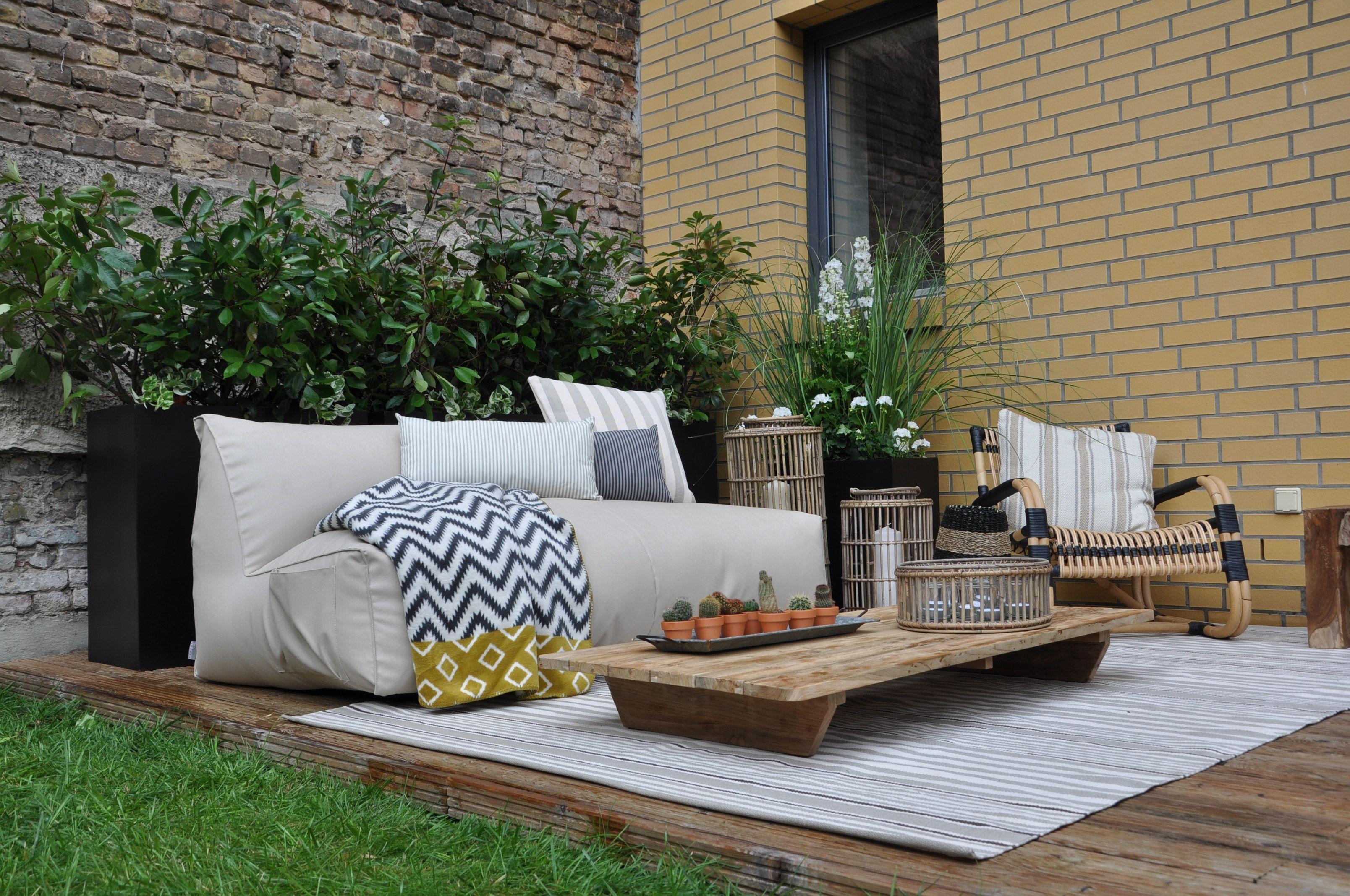 kübelpflanzen immergrün sichtschutz Terrasse Balkon