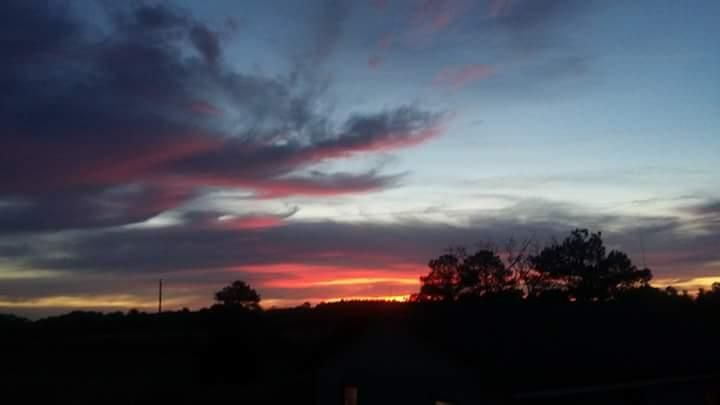 I took these pics from put on back porch a few weeks ago .looks like a fire breathing dragon just absolutely gorgeous