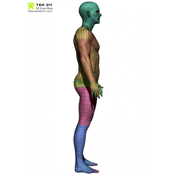 Male Base Mesh | Anatomy Study tips | Pinterest | Anatomy study and ...