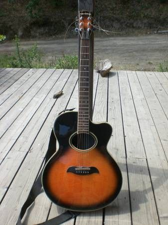 Polaris Acoustic Guitar With Carry Bag 100 Guitar Acoustic Guitar Acoustic