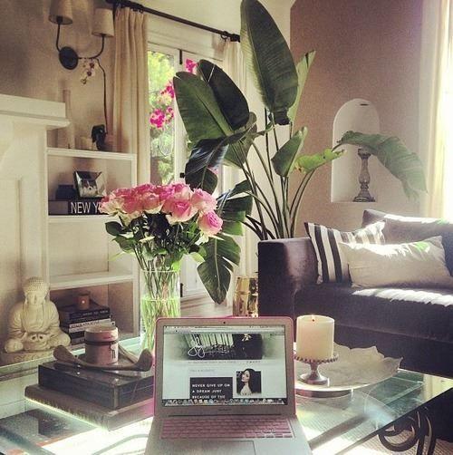 home #decoration #shaymitchell Home decor Pinterest Shay