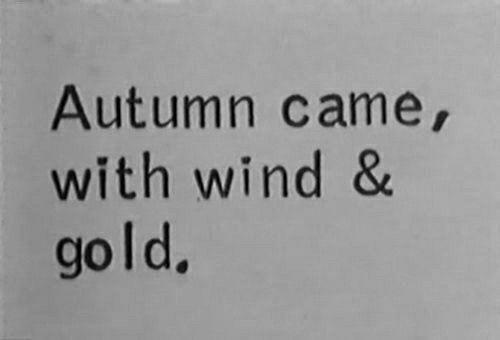 ˗ˏˋ insta & pinterest: keelybxo ˊˎ˗ #autumnleavesfalling