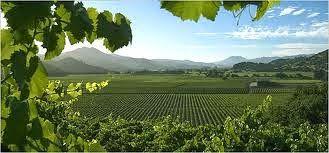 compra-vino.com Blog: El vino en América I