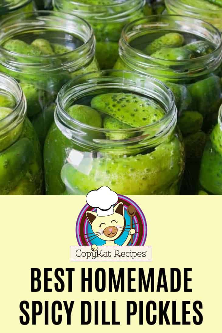 How to make spicy dill pickles recipe dill pickle